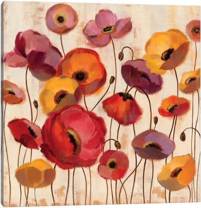 Sunrise Anemones Canvas Art Print