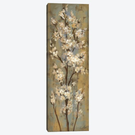 Almond Branch II Canvas Print #WAC1327} by Silvia Vassileva Canvas Art Print