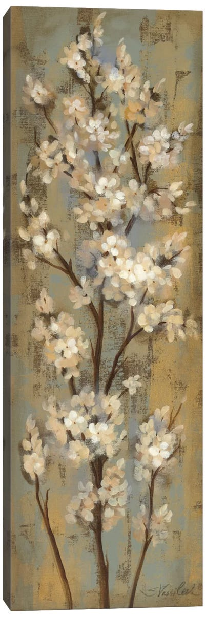 Almond Branch II Canvas Art Print