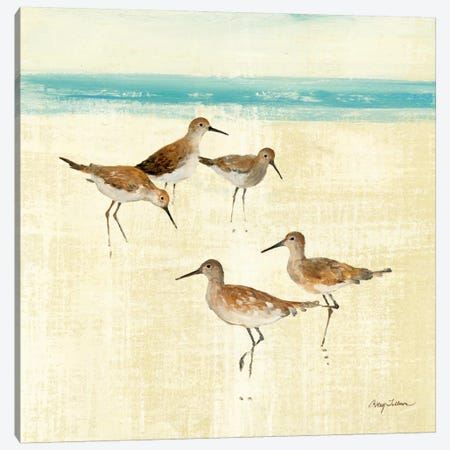 Sand Pipers Square I  Canvas Print #WAC132} by Avery Tillmon Canvas Artwork