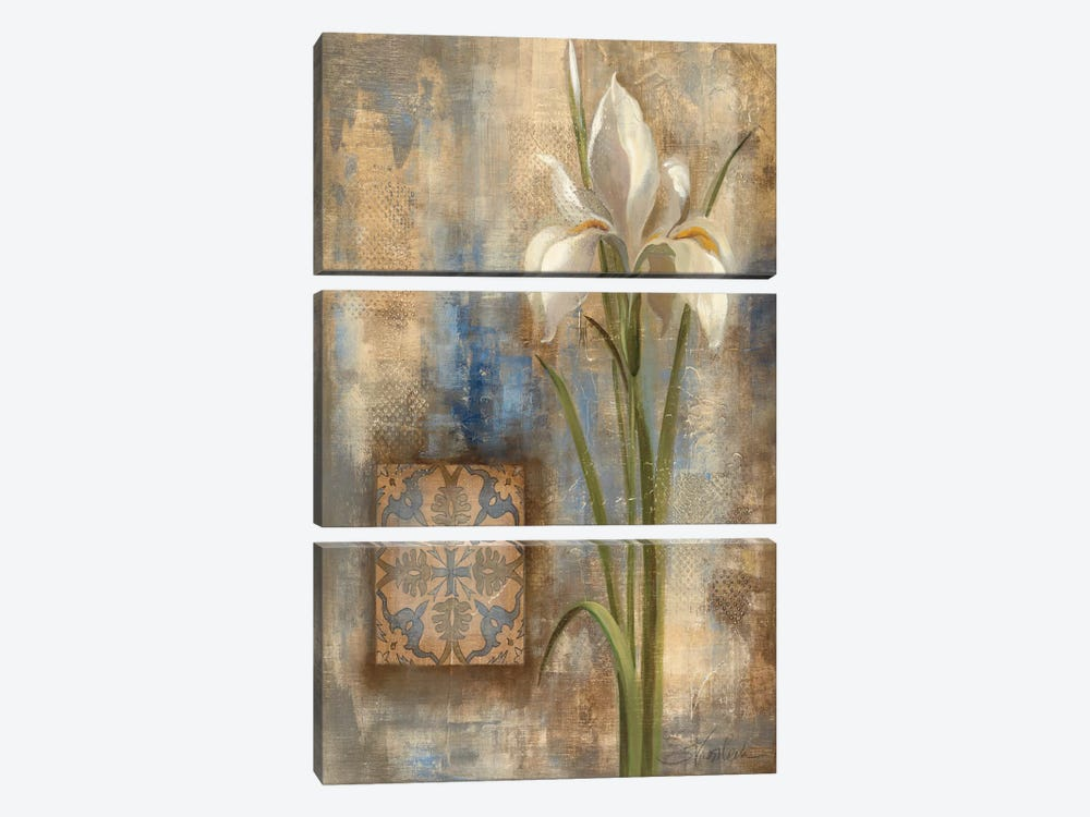 Iris and Tile by Silvia Vassileva 3-piece Art Print