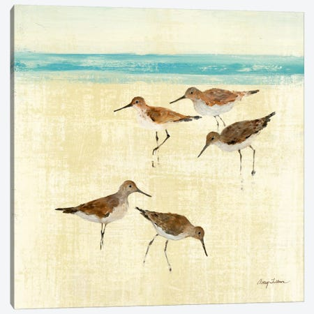 Sand Pipers Square II  Canvas Print #WAC133} by Avery Tillmon Canvas Artwork