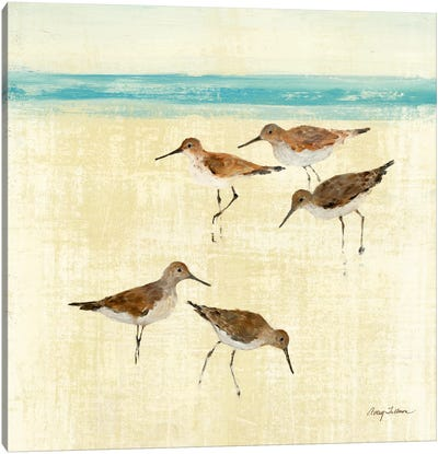 Sand Pipers Square II  Canvas Print #WAC133