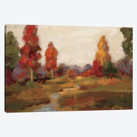 Fall Creek  Canvas Print #WAC1389} by Silvia Vassileva Canvas Artwork