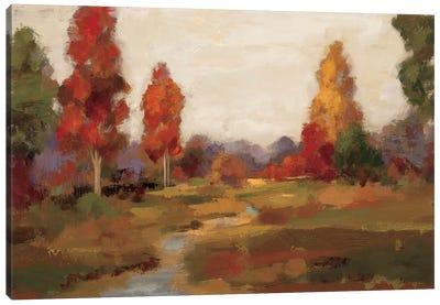Fall Creek  Canvas Print #WAC1389
