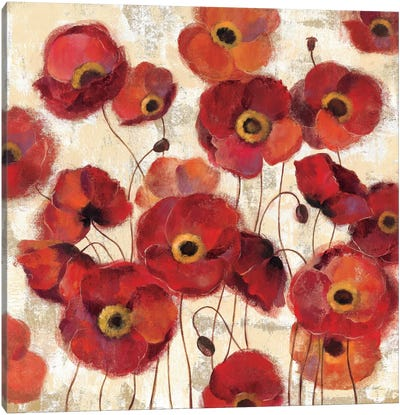 Bold Poppies  Canvas Print #WAC1390