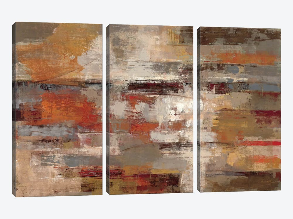 Painted Desert  by Silvia Vassileva 3-piece Canvas Art