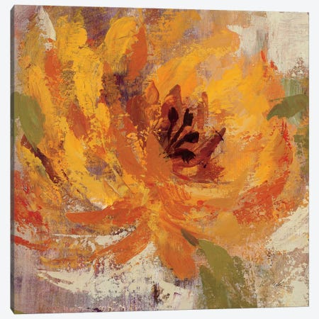 Fiery Dahlias I  Canvas Print #WAC1396} by Silvia Vassileva Canvas Wall Art