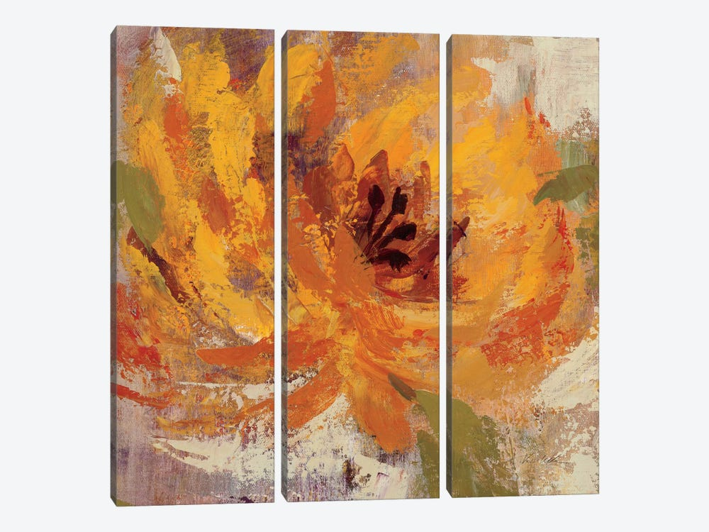 Fiery Dahlias I by Silvia Vassileva 3-piece Canvas Print