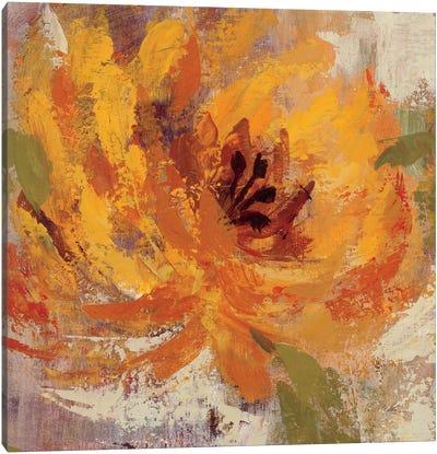 Fiery Dahlias I  Canvas Art Print