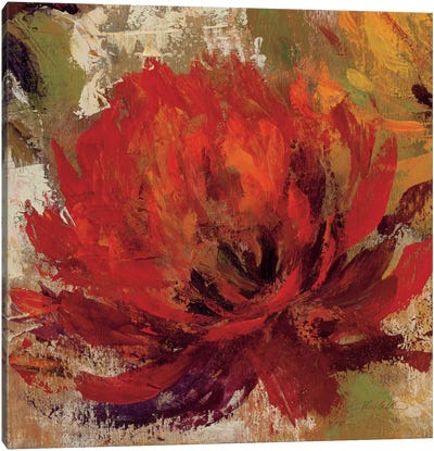 Fiery Dahlias II  Canvas Art Print