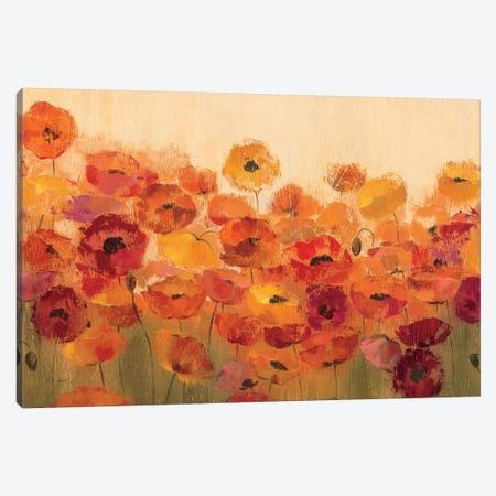 Summer Poppies  Canvas Print #WAC1404} by Silvia Vassileva Canvas Art