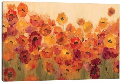 Summer Poppies II Canvas Print #WAC1406