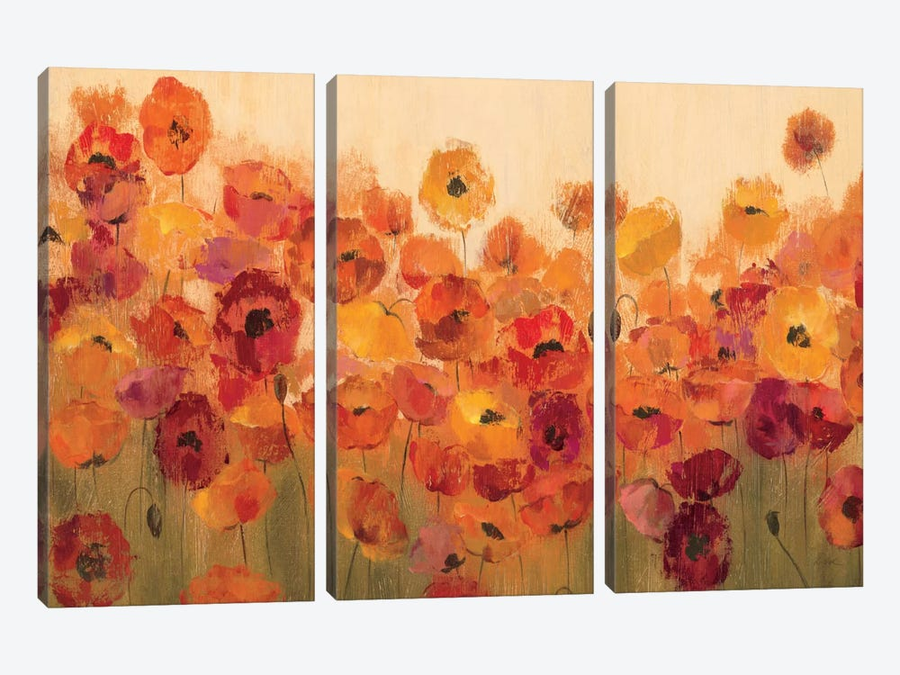 Summer Poppies II by Silvia Vassileva 3-piece Canvas Print