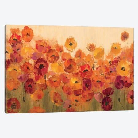 Summer Poppies II Canvas Print #WAC1406} by Silvia Vassileva Canvas Artwork