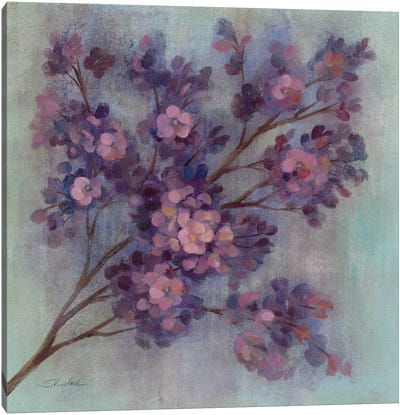 Twilight Cherry Blossoms I  Canvas Art Print