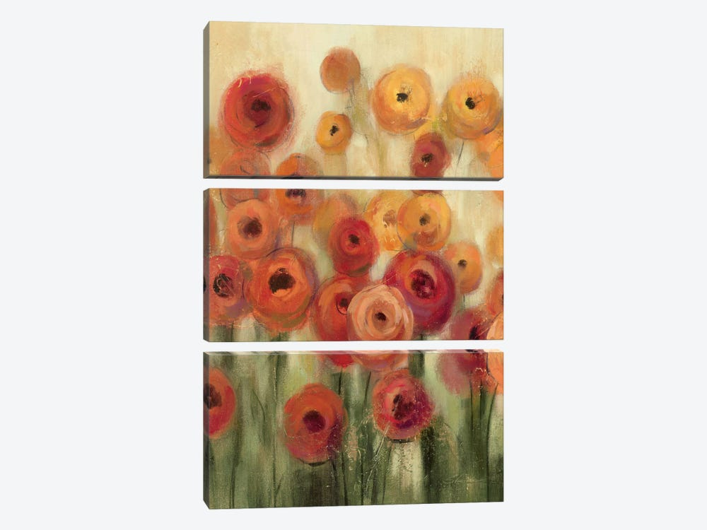 Ranunculi Field II by Silvia Vassileva 3-piece Canvas Art Print