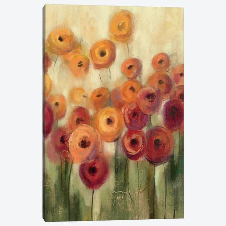 Ranunculi Field III  Canvas Print #WAC1436} by Silvia Vassileva Canvas Print