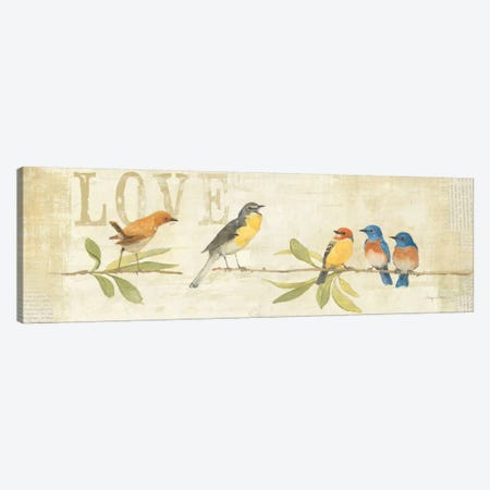 Adoration of the Magpie Panel I  Canvas Print #WAC143} by Avery Tillmon Canvas Print