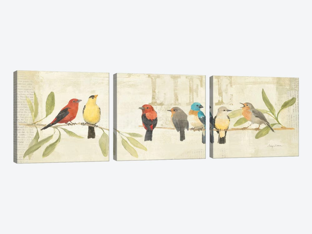 Adoration of the Magpie Panel II  by Avery Tillmon 3-piece Canvas Print