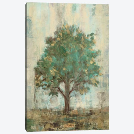 Verdi Trees I  Canvas Print #WAC1454} by Silvia Vassileva Canvas Art Print