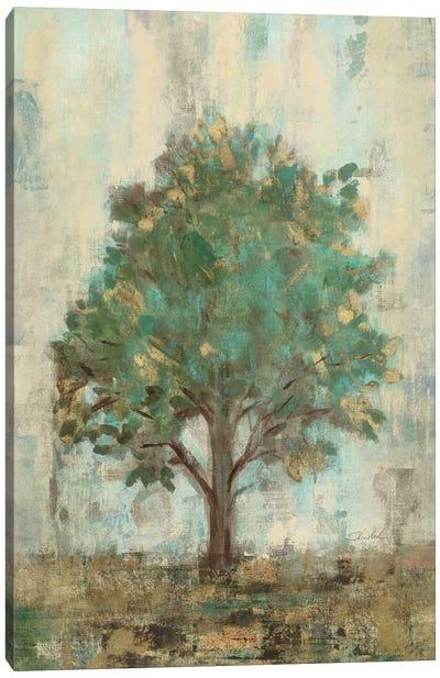 Verdi Trees I  Canvas Art Print