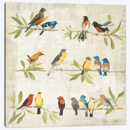 Adoration of the Magpie Music Canvas Print #WAC149} by Avery Tillmon Art Print