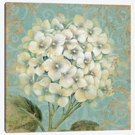 Hydrangea Square I Canvas Print #WAC1585} by Wild Apple Portfolio Canvas Print