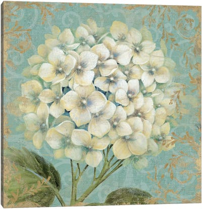 Hydrangea Square I Canvas Art Print