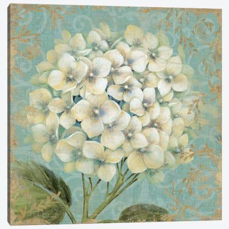 Hydrangea Square I Canvas Print #WAC1585} by Wild Apple Portfolio Canvas Print