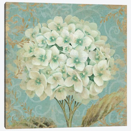 Hydrangea Square II Canvas Print #WAC1586} by Wild Apple Portfolio Art Print