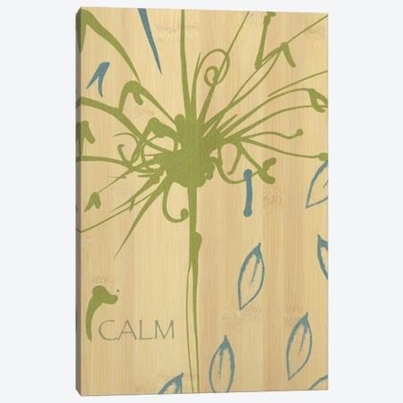 Calm Canvas Print #WAC1587} by Wild Apple Portfolio Art Print