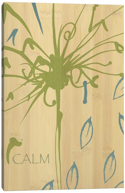 Calm Canvas Art Print