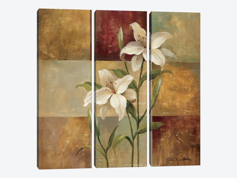 Lily Square by Silvia Vassileva 3-piece Canvas Artwork