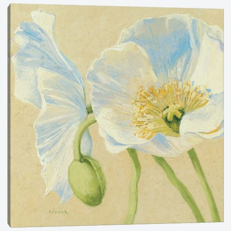 White Poppies II Canvas Print #WAC1601} by Wild Apple Portfolio Art Print