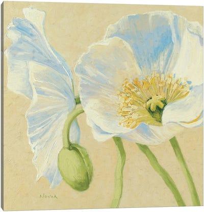 White Poppies II Canvas Print #WAC1601