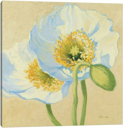 White Poppies III Canvas Art Print