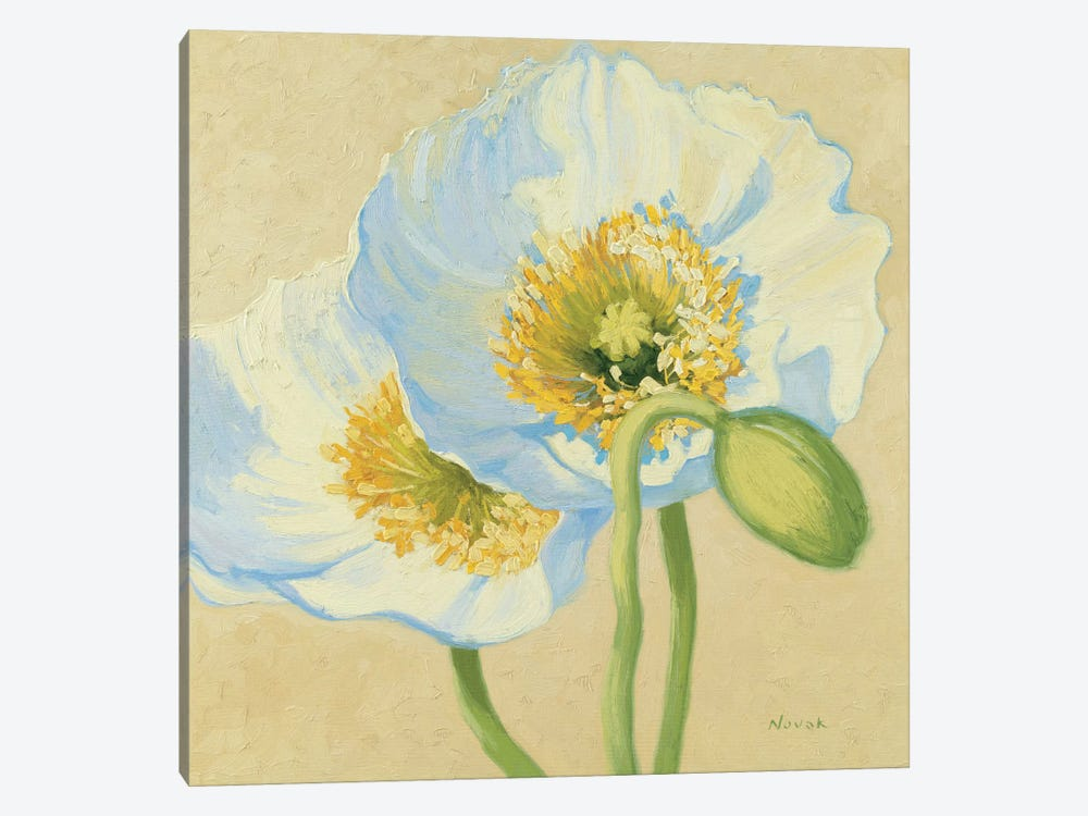 White Poppies III by Wild Apple Portfolio 1-piece Canvas Artwork