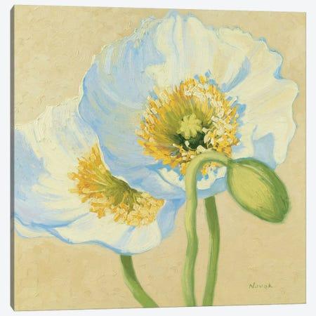 White Poppies III Canvas Print #WAC1602} by Wild Apple Portfolio Canvas Art Print