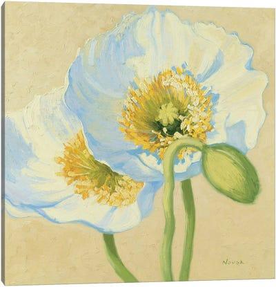 White Poppies III Canvas Art Print