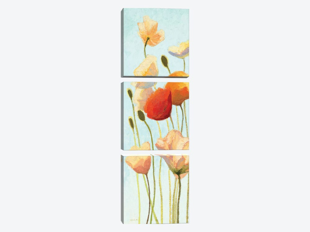 Just Being Poppies II 3-piece Canvas Art Print