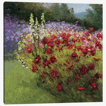 46 Cosmos Garden I Canvas Print #WAC1606} by Wild Apple Portfolio Canvas Art