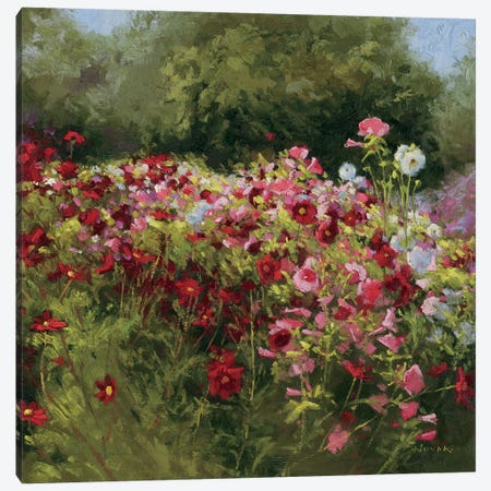 46 Cosmos Garden II Canvas Print #WAC1607} by Wild Apple Portfolio Canvas Art
