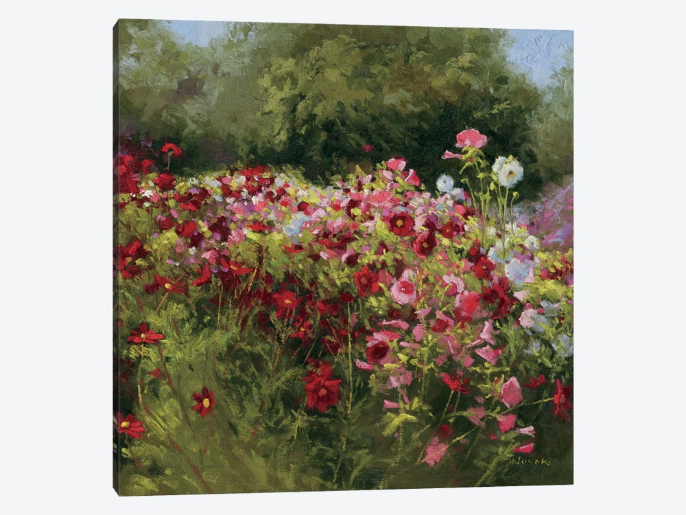 46 Cosmos Garden II by Wild Apple Portfolio 1-piece Canvas Art Print