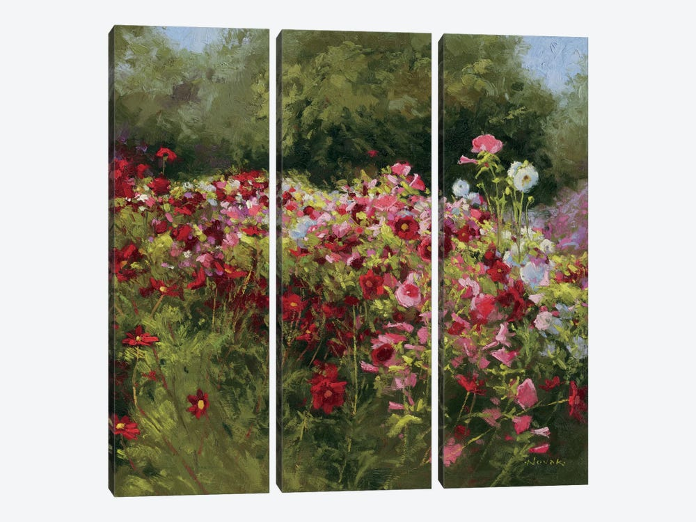 46 Cosmos Garden II by Wild Apple Portfolio 3-piece Canvas Print
