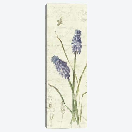 Hyancinth Panel Canvas Print #WAC1612} by Wild Apple Portfolio Canvas Art