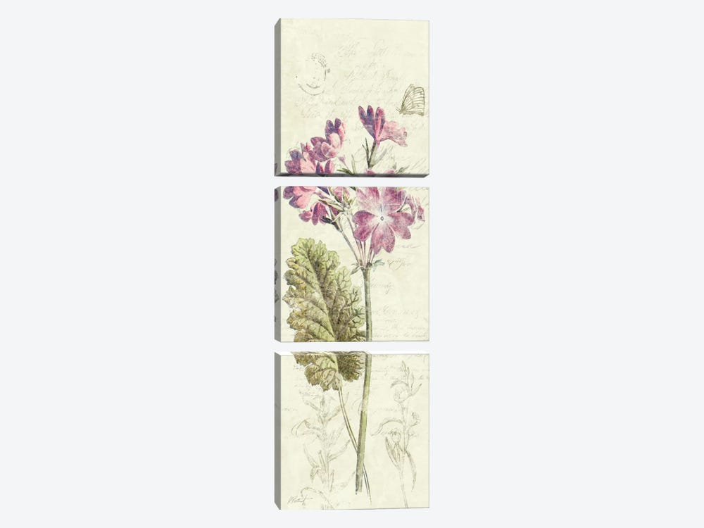 Primrose Panel 3-piece Canvas Wall Art