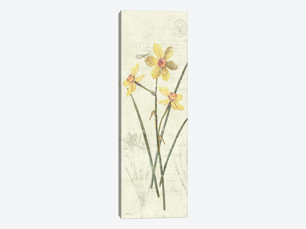 Daffodil Panel by Wild Apple Portfolio 1-piece Art Print