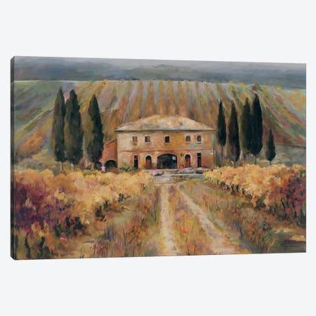 Toscana Vigna Canvas Print #WAC1615} by Wild Apple Portfolio Canvas Art Print