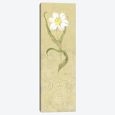 Delight in Beauty Canvas Print #WAC1619} by Wild Apple Portfolio Canvas Art